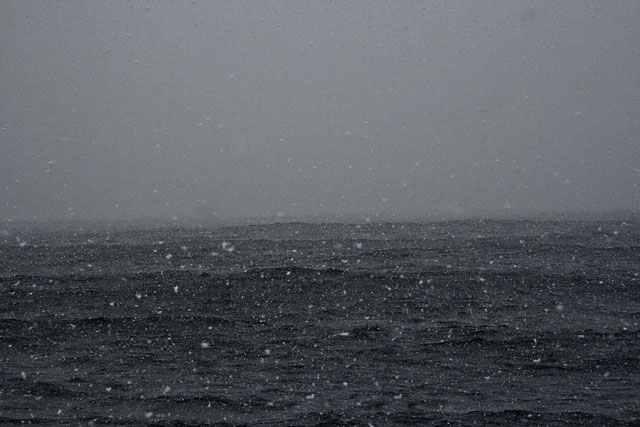 Snow at sea, Bransfield Strait.